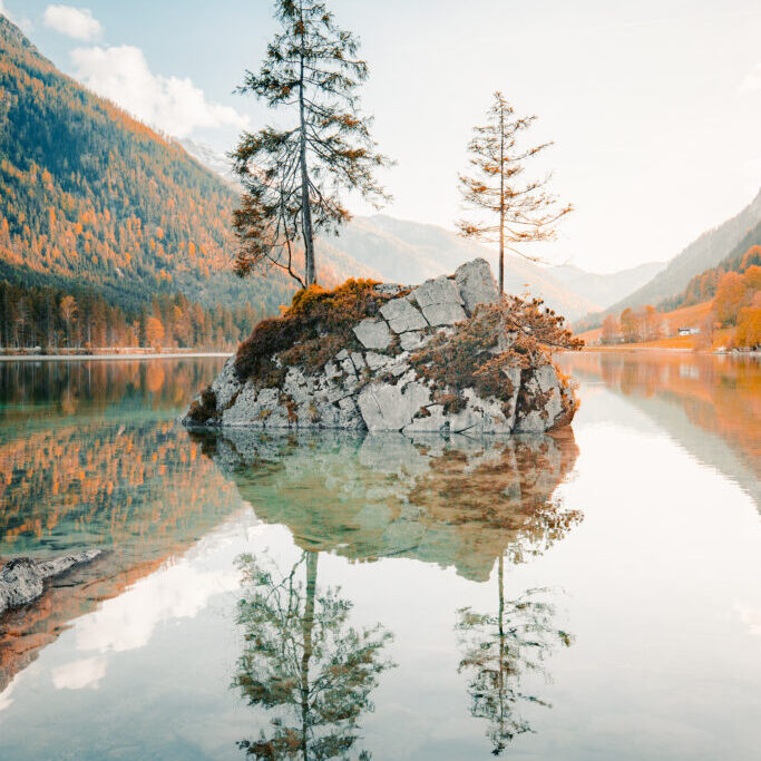 Bäume spiegeln sich im Wasser – Sinnbild für die Tiefenpsychologische Therapie